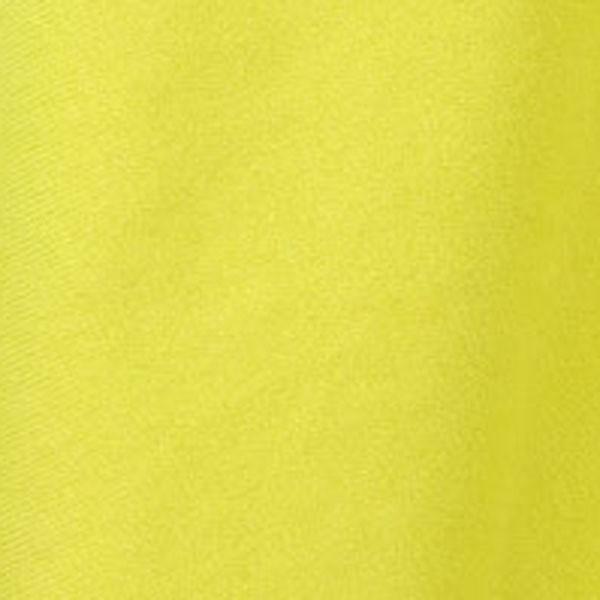 kiwi (0630)
